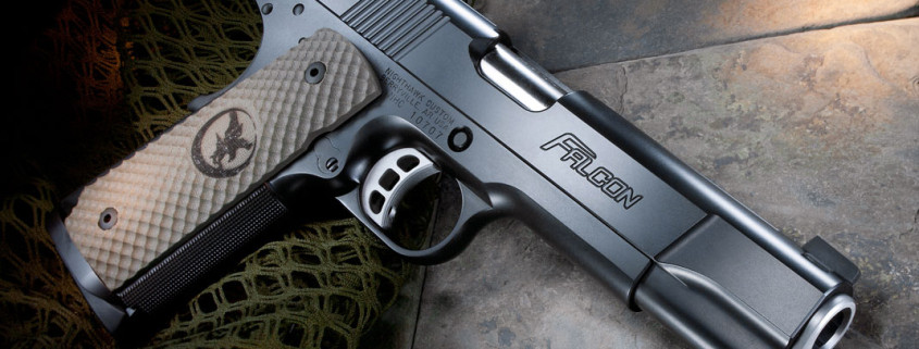 falcon-02